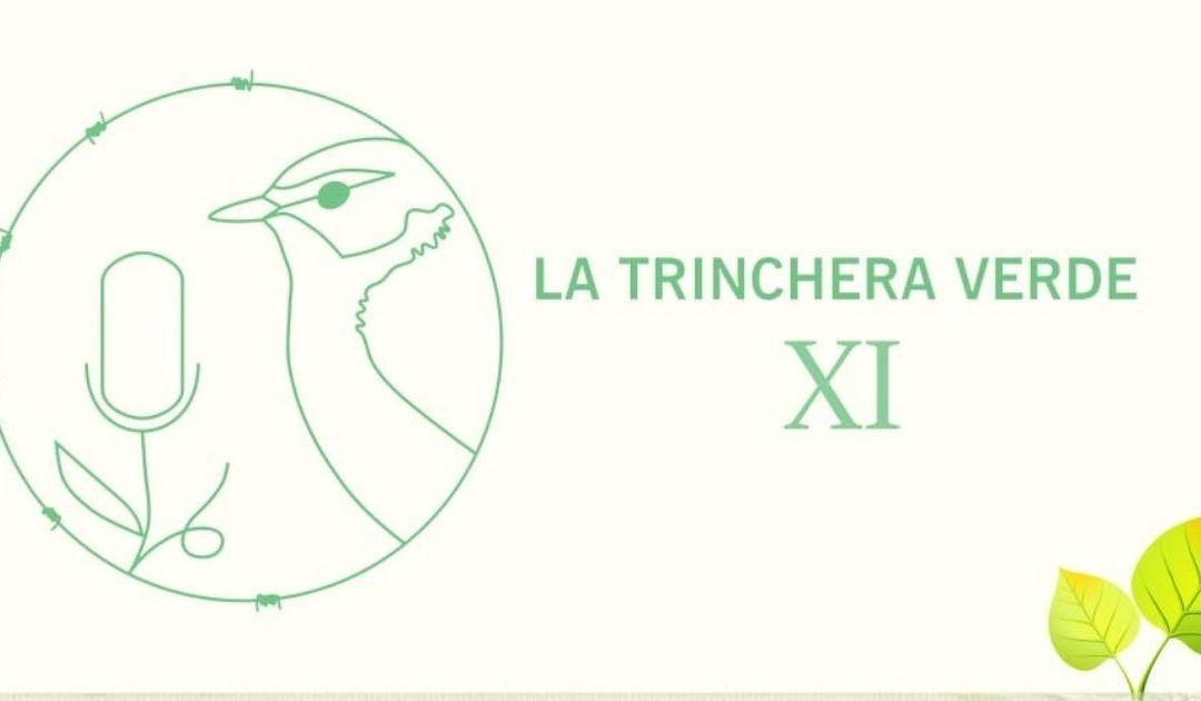 La Trinchera Verde 11:  Fundación Kilian Jornet. Luchar contra el cambio climático desde las montañas –  Problemática del ganado asilvestrado en los Espacios Naturales Protegidos. Ganado guanil en Canarias.